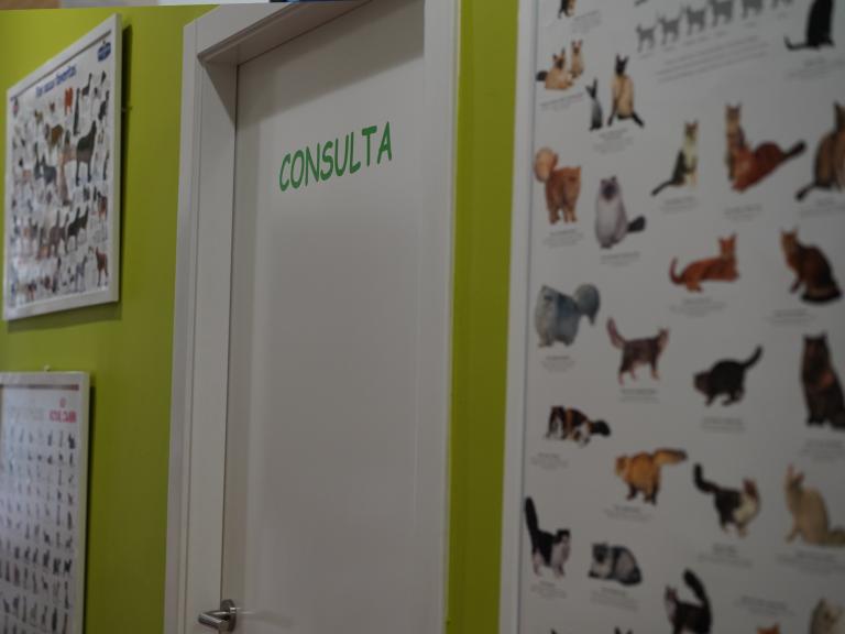 clinica_veterinaria_os_durans_villagarcía_instalaciones_consulta