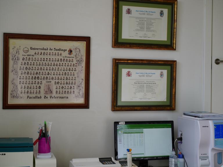 clinica_veterinaria_os_durans_villagarcía_instalaciones_consulta_7