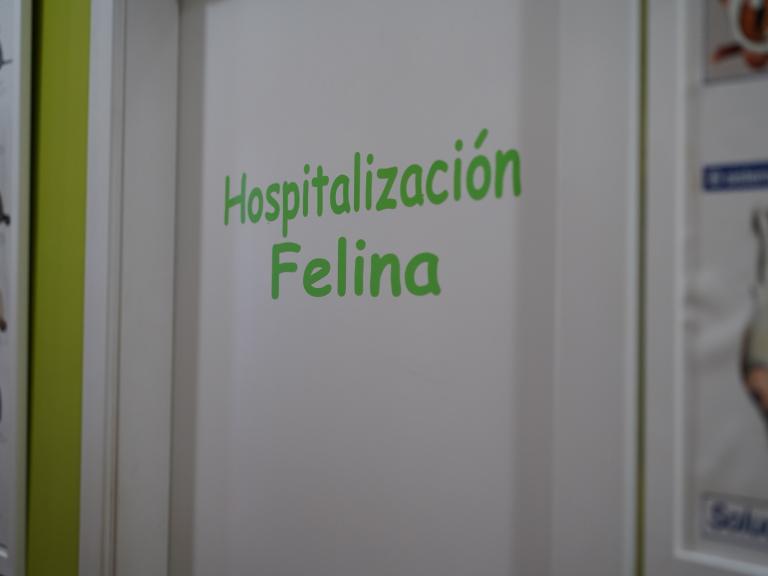 clinica_veterinaria_os_durans_villagarcía_instalaciones_hospital_felino