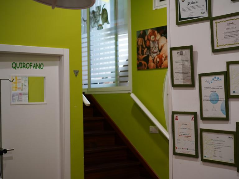 clinica_veterinaria_os_durans_villagarcía_instalaciones_pasillo