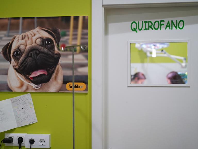 clinica_veterinaria_os_durans_villagarcía_instalaciones_pasillo2